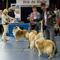 kolia-dlhosrsta-collie-rough-club-dog-show-holland 100.jpg
