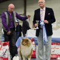 kolia-dlhosrsta-collie-rough-club-dog-show-holland 110.jpg