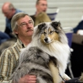 kolia-dlhosrsta-collie-rough-club-dog-show-holland 117.jpg