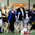 kolia-dlhosrsta-collie-rough-club-dog-show-holland 143.jpg