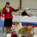kolia-dlhosrsta-collie-rough-club-dog-show-holland 81.jpg