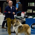 kolia-dlhosrsta-collie-rough-club-dog-show-holland 94.jpg