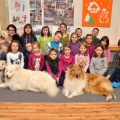 kolia-dlhosrsta-canisterapia-v-skole-collie-rough-canistherapy-in-school 11.jpg