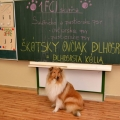 kolia-dlhosrsta-canisterapia-v-skole-collie-rough-canistherapy-in-school 12.jpg