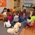 kolia-dlhosrsta-canisterapia-v-skole-collie-rough-canistherapy-in-school 3.jpg