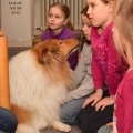kolia-dlhosrsta-canisterapia-v-skole-collie-rough-canistherapy-in-school 5.jpg