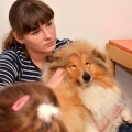 kolia-dlhosrsta-canisterapia-v-skole-collie-rough-canistherapy-in-school 7.jpg