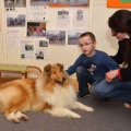 kolia-dlhosrsta-canisterapia-v-skole-collie-rough-canistherapy-in-school 9.jpg