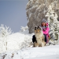 kolia-dlhosrsta-turistika-tura-na-klak-collie-rough-winter 22.jpg