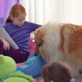 kolia-dlhosrsta-deti-canisterapia-children-canistherapy-collie-rough 12.jpg