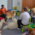 kolia-dlhosrsta-deti-canisterapia-children-canistherapy-collie-rough 2.jpg