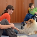 kolia-dlhosrsta-deti-canisterapia-children-canistherapy-collie-rough 7.jpg