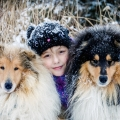kolia-dlhosrsta-zima-collie-rough-winter 16.jpg