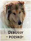 studdogs Debussy sk